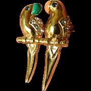 SALE Two parrots Pin