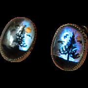 1930-1940's Butterfly earrings