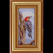 Red Head Woodpecker-Miniature Oil Painting