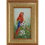 Scarlet Macaw-Miniature Oil Painting on Ivorine