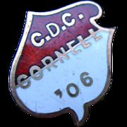 SALE 1906 Gold Enamel CORNELL University Pin