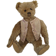 Steiff's Utterly Charming Early Turn of Last Century Teddy Bear With Provenance