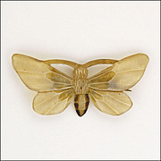 SALE PENDING French Art Nouveau Natural Horn Carved Butterfly Pin