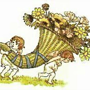 Kate Greenaway's 'Language Of Flowers' DJ, Illustrations -  Art, Nature, Garden, Hardcover, Vi