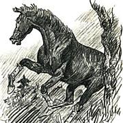 SOLD 1956 'Buckle Horse', PAUL BROWN Equestrian Art, Rare 1st Ed, First Fling Racehorse, Origi