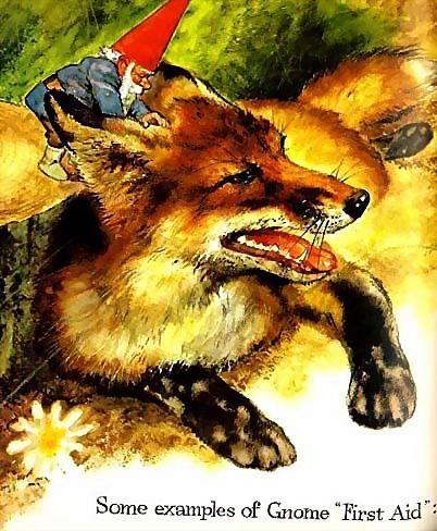 1977 Gnomes 'Rien Poortvliet' Art, RARE 1st Ed, DJ, Fantasy, Wil Hyugen, Mythology, Folklore