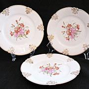 """20% OFF Vintage (3) Z.S. & Co 7 1/2"""" Bavaria Porcelain Salad Plates 1880-1910 Mint Unused Condition"""