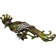 SALE Jaw Dropper Fantasy Vintage 5 ¼ Inch Cockatoo Brooch