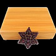 Antique Bohemian Garnet 6-point Star Brooch/Pin