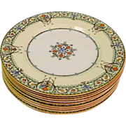 REDUCED 10 Royal Worcester Chantilly Large Dinner Plates with Raised Enamel