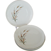 6 Golden Harvest Dinner Plates - Nasco Japan