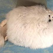 SOLD Extraordinary Edwardian Vintage Large White Fox Fur Hand Muff