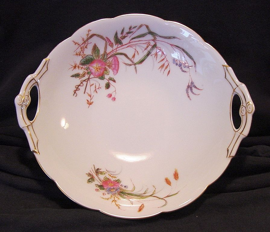 Attractive 139 Year Old Limoges Porcelain Bowl ~ Factory Decorated ~ Hand Painted with Flowers and Grasses ~ Delinieres & Co / Tressemann & Vogt (D&C, T&V)  1870's