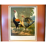 """Awesome Print of Mr. John Douglas's Duckwing Game Fowls """"Sir Harry"""" and """"Lady"""" by J. W. Ludlow 1873"""