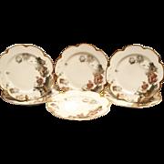 """SALE 6 Haviland Plates – 8 1/2"""" W~  Limoges Feu de Four  Luncheon / Dessert ~ """"Parrot"""