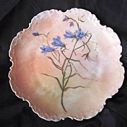 SALE Outstanding Rosenthal Cabinet Plate Hand Painted with Blue Wispy flowers on a Peach ...