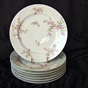 SALE Seven (7) Limoges Porcelain Dinner Plates ~ Pinkish Purple Flowers ~ Haviland Limoges 188