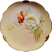 "SALE Wonderful Bavarian Porcelain Cabinet Plate ~ Hand Painted by Pickard Artist ""Florence J"