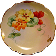 SALE Exquisite ~ Porcelain Plate by the Pickard Studio Hand Painted with Nasturtiums by Floren