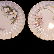 SALE 2 ~ Wonderful Old Limoges Porcelain Plates ~ Hand Painted with Flowers and Butterflies ..