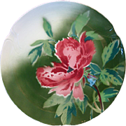 "SALE Colorful French Faience Cabinet Plate 10 1/2""  ~  Red Poppies ~ Gien France 1920's"