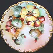 Gorgeous Limoges Porcelain Cabinet Plate ~ Hand Painted with Colorful Nasturtiums ~ R. Delinieres & Co France 1879-1900