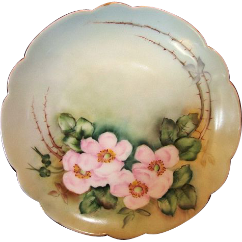 "Exceptional Bavarian Porcelain Cabinet Plate ~ Hand Painted with Wild Pink Roses ~ Artist "" Lebovitz ""Signed ~ Bavaria 1910"
