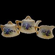 SALE Wonderful Bavarian Tea Set Teapot, Creamer, Sugar and 3 cups / saucers ~ Hand painted wit