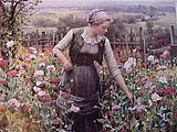Time Garden