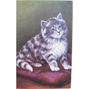 SALE Cat Post Card Artist Signed