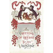 Cute C1910 Embossed Valentines Postcard Playful Cats & Kittens