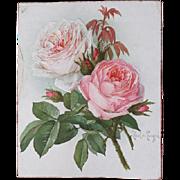 Antique Cabbage Roses Chromolithograph Print Paul de Longpre Victorian