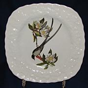 Square Audubon Dessert Plate, Fork-Tailed Flycatcher, Alfred Meakin