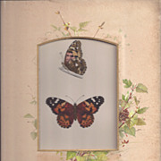 Colored Plate MORRIS Butterfly Book, PAINTED LADY, Photo Album Mat