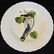 "Lovely Vintage Alfred Meakin Bird 9"" Plate, KING BIRD #79"