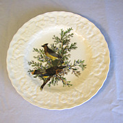 "Vintage Alfred Meakin Audubon Plate (9""), CEDAR BIRD #43"