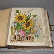 Large Victorian Photo Album, Floral Chromolithograph Pages
