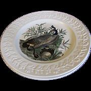 Lovely Large Bird Plate Adams Audubon CANADIAN GOOSE