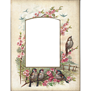 SALE Lovely Colored Page from Victorian Photograph Album, Birds & Flowers