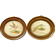 Georgian Miniature Silkwork Embroidery PAIR Birds Circa 1780's