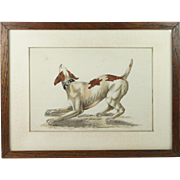 Antique English Watercolor Painting Pointer Dog Circa 1840