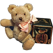 SALE JACKIE STEIFF TEDDY BEAR ORIGINAL NOT REPLICA WITH CELEBRATION BROCHURE EXCEPTIONALLY RAR