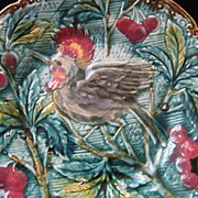 C. 1900's Majolica Plate w/Bird, Berries & Leaves in Rich Colors