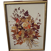 Vintage Framed Dried Flowers By Hennrietta Brownie Strong