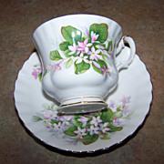 Royal Albert  England Mayflower Tea Cup & Saucer
