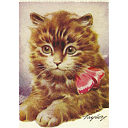 "Charming Vintage Postcard Post Card Kitten Kitty Cat "" Wishing You The Best of Luck """
