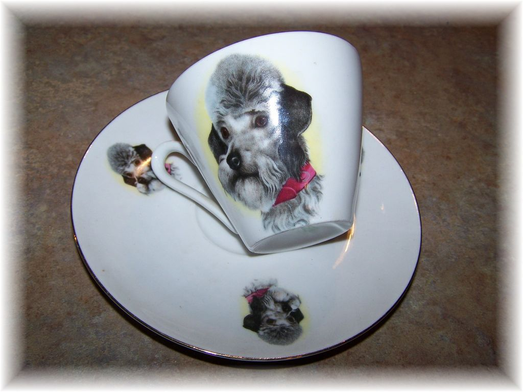 Delicate Porcelain Dog Tea Cup & Saucer Bavaria