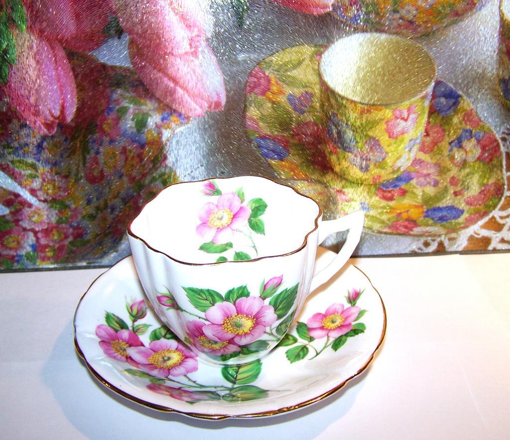 """""""Alberta Wild  Rose"""" Tea Cup & Saucer Windsor England"""