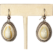 Antique Victorian Cowry Shell Earrings in Silver, c. 1880