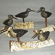 Rig of 5 Miniature Shore Bird Decoys in Original Paint w/ Birch Stands